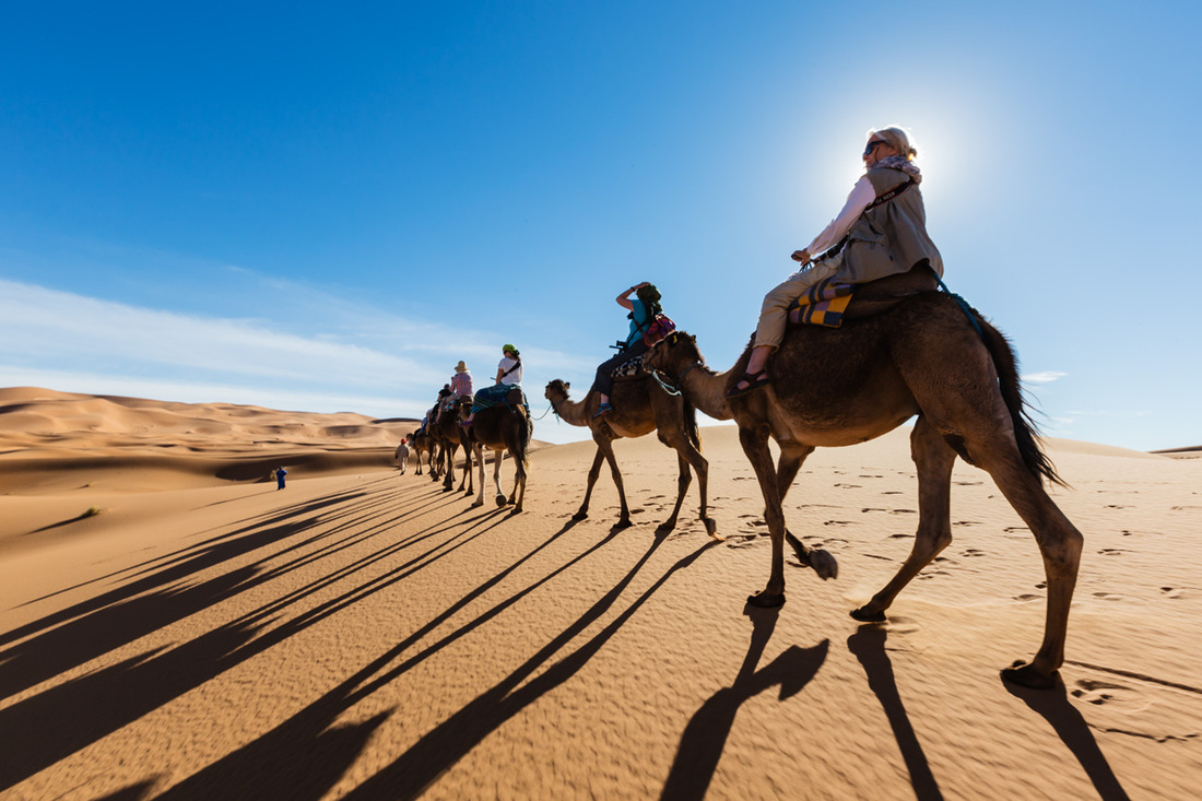 Tourist on a camel expedition in the Sahara